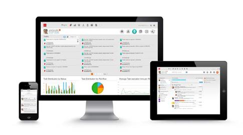 Infor LN ERP Software